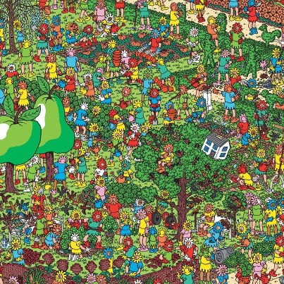 Wheres Wally in New Zealand?